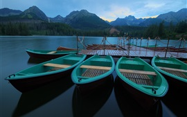 Preview wallpaper Mountains, forest, calm lake, boat, pier, morning