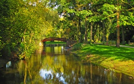 Poland, park, river, bridge, trees, grass