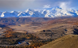 Preview wallpaper The Altai mountains, autumn, trees, snow