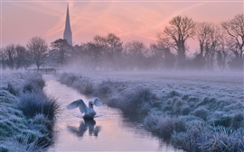 Preview wallpaper UK, England, Cathedral, winter, frost, river, trees, swan, dusk
