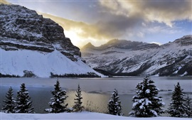 Preview wallpaper Winter, mountains, snow, Bow Lake, trees, Alberta, Canada