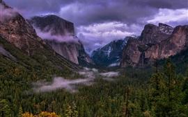 Parque Nacional de Yosemite, EE.UU., árboles, montañas, nubes, niebla, oscuridad