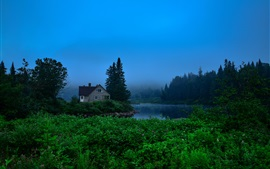 Canada, Jacques-Cartier Park, trees, house, river, fog, dawn