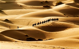 Preview wallpaper Hot desert, sand dunes, the caravan