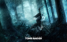 Aperçu fond d'écran Lara Croft, Rise of the Tomb Raider