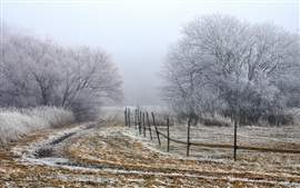 Preview wallpaper Morning fog, trees, field, fence