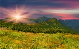 Preview wallpaper Mountains, slope, grass, trees, evening, sunset