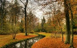 Park, outono, árvores, rio, natureza paisagem