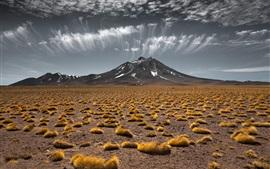 壁紙のプレビュー 草原、山、雲、自然の風景
