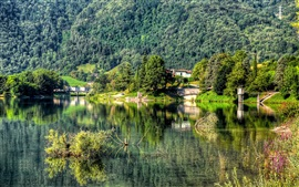 Preview wallpaper Trees, forest, mountain, village, lake