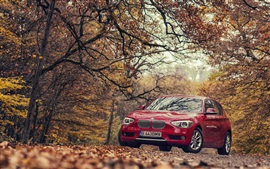 Preview wallpaper BMW 118D F20 red car