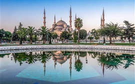 Preview wallpaper Blue Mosque, Sultan Ahmed Mosque, Istanbul, Turkey, pool, palm trees