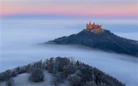 Preview wallpaper Germany, Castle Hohenzollern, autumn, fog, trees
