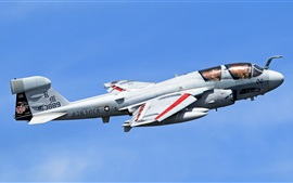 Preview wallpaper Grumman EA-6B Prowler, airplane, sky