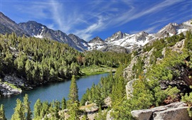 Little Lakes Valley, California, USA, lake, mountain, trees