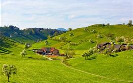 Montanhas, montes, vale, grama, árvores, casa, fazenda
