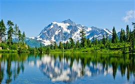 Preview wallpaper Mountains, snow, lake, trees, water reflection