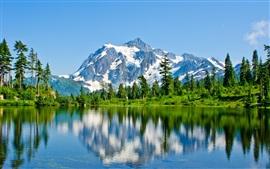 Montañas, nieve, lago, árboles, reflexión del agua