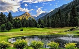 Mountains, trees, grass, pond, fountain, fence, bushes
