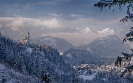 Castelo de Neuschwanstein, Baviera, Alemanha, montanhas, inverno, neve, árvores