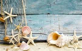 Seashells, starfish, sand, wood
