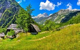Eslovenia, casa, árboles, hierba, cielo, nubes, montañas
