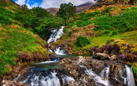 Preview wallpaper Snowdonia, rocks, river, stream, trees, mountains, grass, flowers