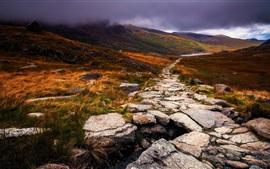 Gales, Gran Bretaña, otoño, piedra, camino, nubes, hierba