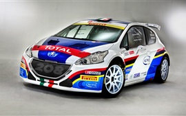 Preview wallpaper 2014 Peugeot 208 race car