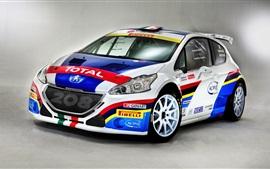 2 014 Peugeot 208 гоночный автомобиль