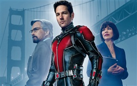 Preview wallpaper Ant-Man HD movie