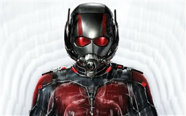 Preview wallpaper Ant-Man movie 2015
