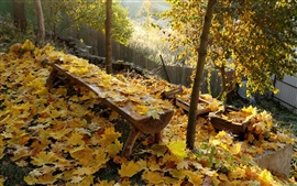 Preview wallpaper Autumn, yellow leaves, bench, fence