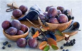 Fruits, plum, berries, twigs, leaves