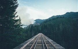 Preview wallpaper Railway, road, bridge, wood, trees, mountains