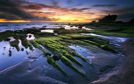 Танах Лот, Бали, Индонезия, море, пляж, закат, красивые пейзажи