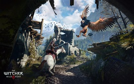 Aperçu fond d'écran The Witcher 3: sauvage Hunt, bataille monstre