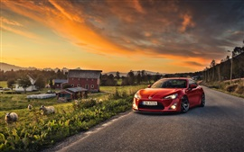 Toyota GT86 car, red color, sheep, houses