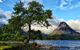 Preview wallpaper Tree, lake, mountains, nature landscape