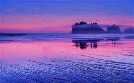 Preview wallpaper USA, Washington, Pacific ocean, sea water, pink sunset, clouds, blue