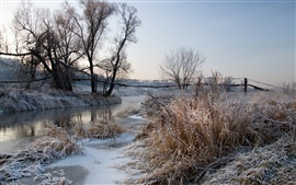 Winter, Frost, Morgendämmerung, Fluss, Bäume