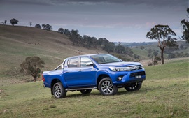 Preview wallpaper 2015 Toyota Hilux SR5 blue jeep