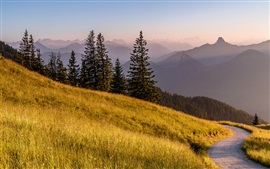 Preview wallpaper Bavaria, Germany, Alps mountain, road, grass, trees