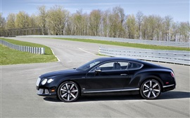 Preview wallpaper Bentley Continental GT Le Mans Edition car side view