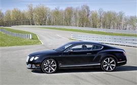 Bentley Continental GT Le Mans Edição Opinião lateral do carro