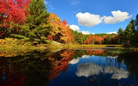 Preview wallpaper Clouds, forest, lake, trees, autumn