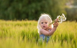 Cute girl in wheat field, daisies, flowers