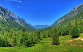 Preview wallpaper Germany, Bavaria, nature landscape, mountains, forest, trees, blue sky