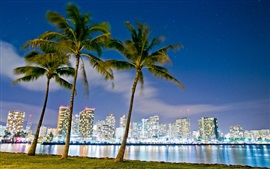 Preview wallpaper Hawaii, Honolulu, Beach Park, buildings, night, lights