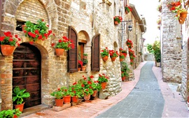 Preview wallpaper Italy, street, house, flowers, road